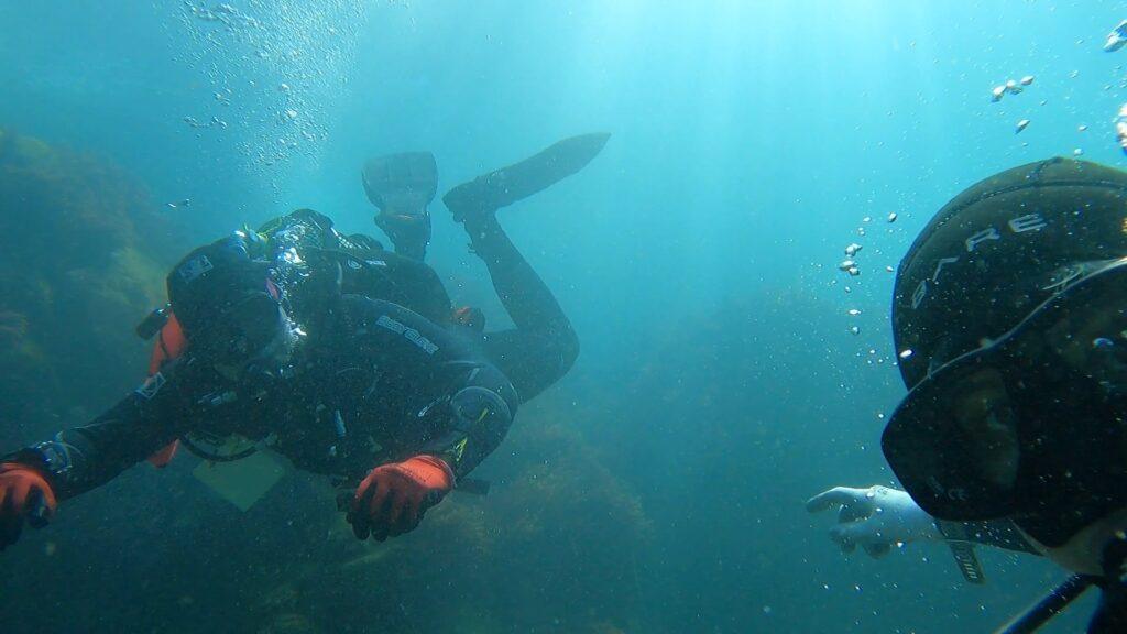 Research dives in Ponta do Lazareto