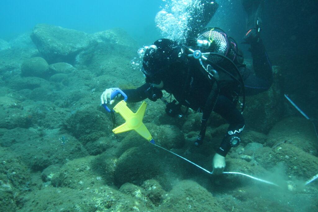 CCMAR Scientific Diving Course