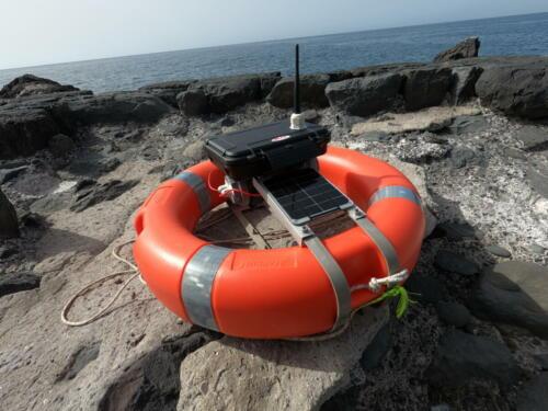 databuoy with antenna on the rocks waiting to be deployed